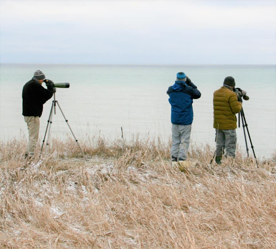 Citizen Scientists flock to the shores of Lake Ontario for the 74th Annual Lake Ontario Mid-Winter Waterfowl Inventory