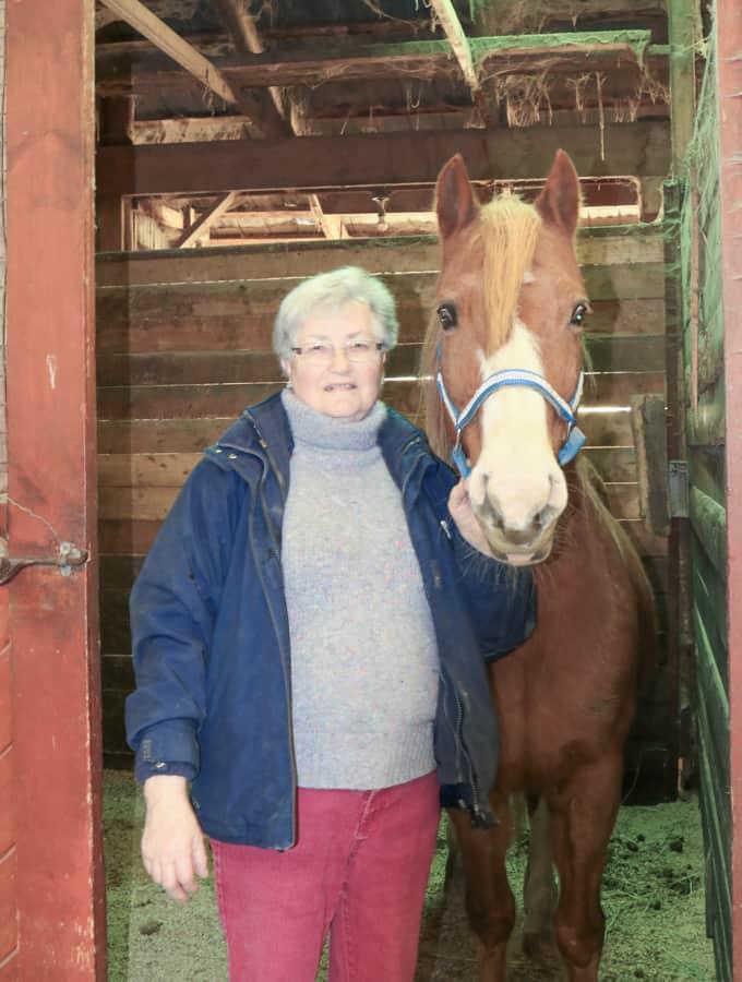 The Locals: Trillium Equestrian Centre