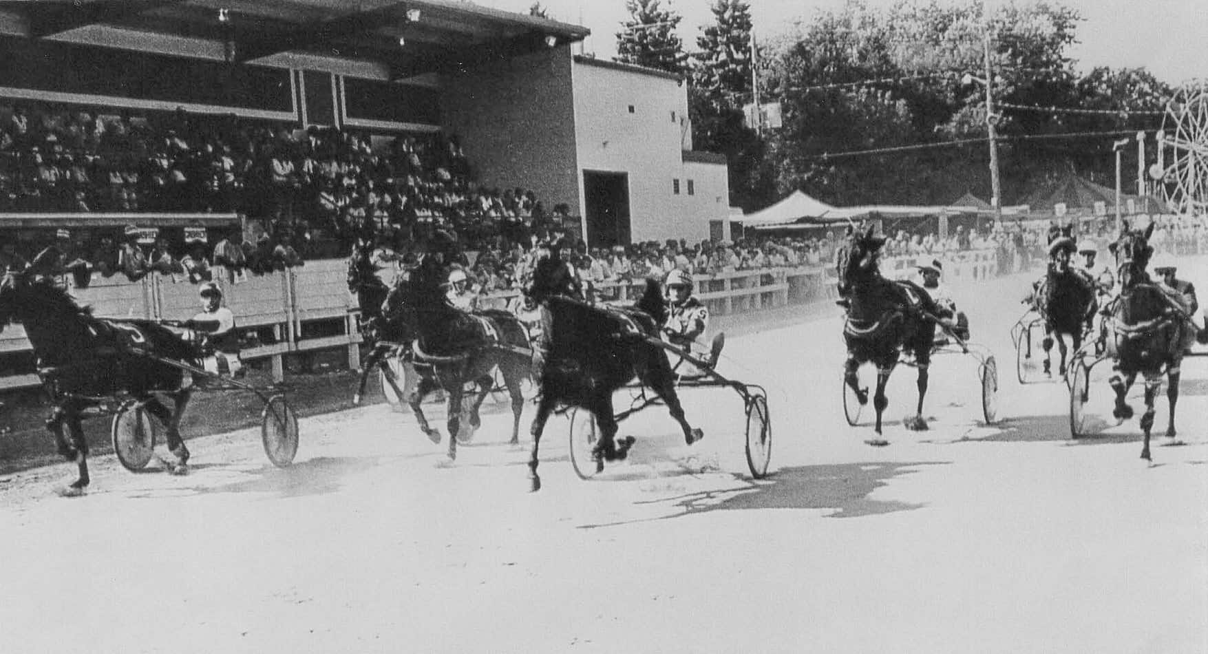 20200908-horse racing fair