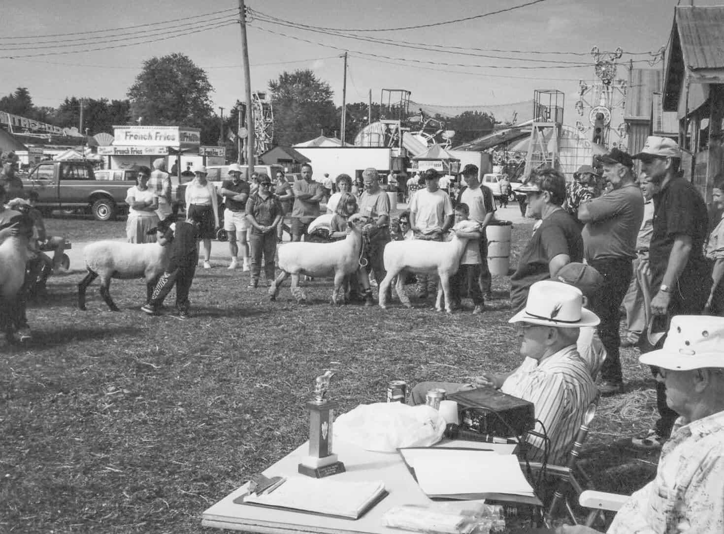 20200908-sheep show 1998