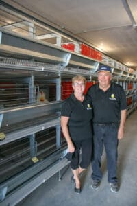 Second generation egg farmers get cracking on a new egg barn