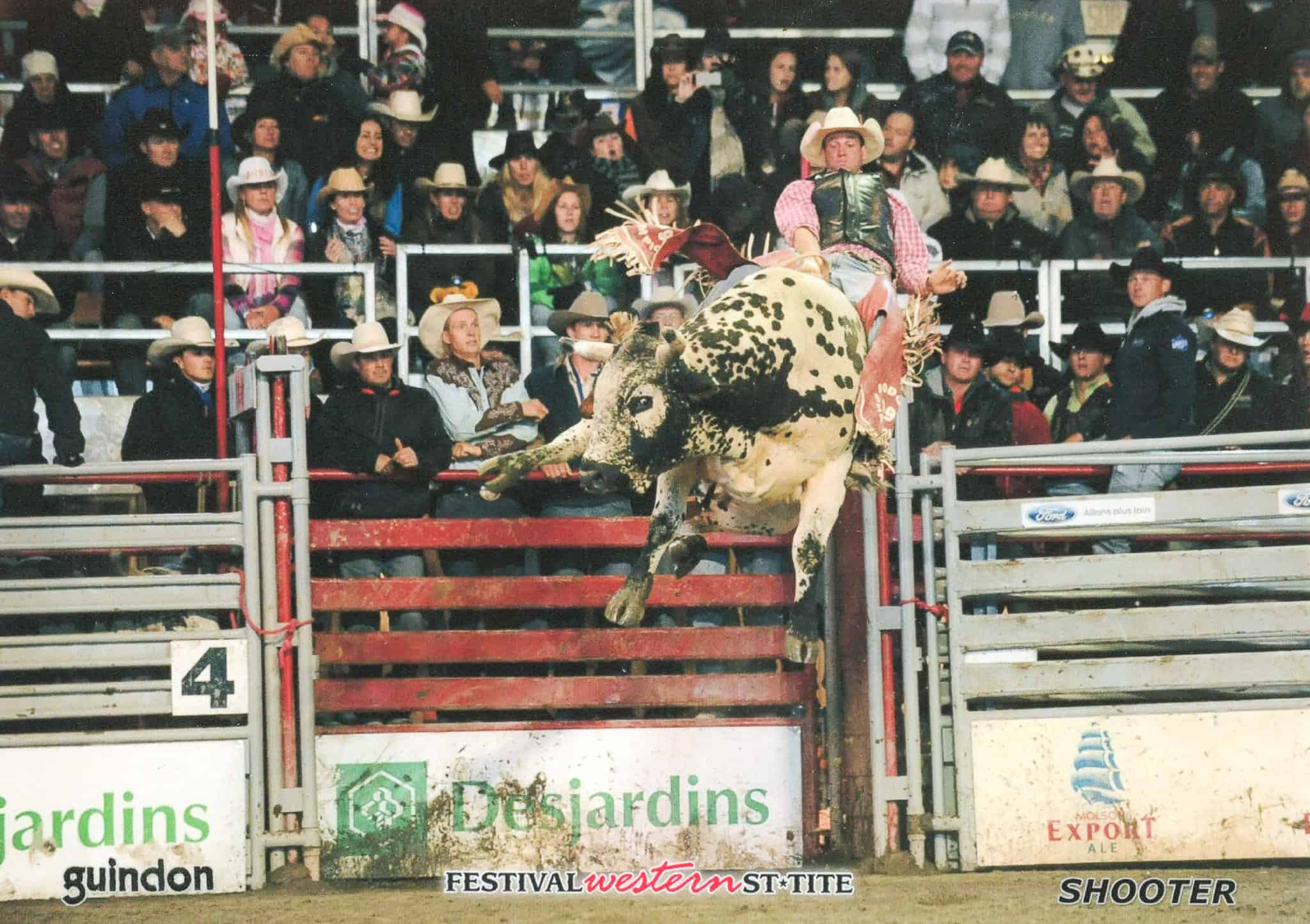 You are currently viewing The Locals: Bull riding: not for the faint of heart