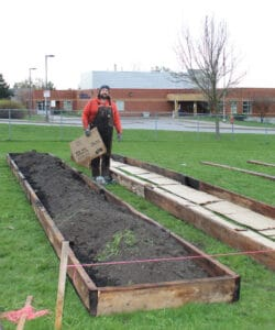 Read more about the article Garden nearly ready to spring to life