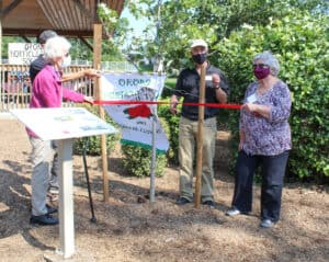 Read more about the article 100 years of beautifying Orono