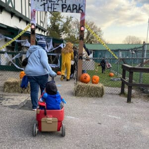 Jungle Cat World's second prowl at the park Halloween event